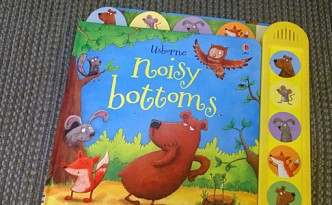 What are we reading? Noisy Bottoms