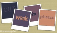 our week in photos topper